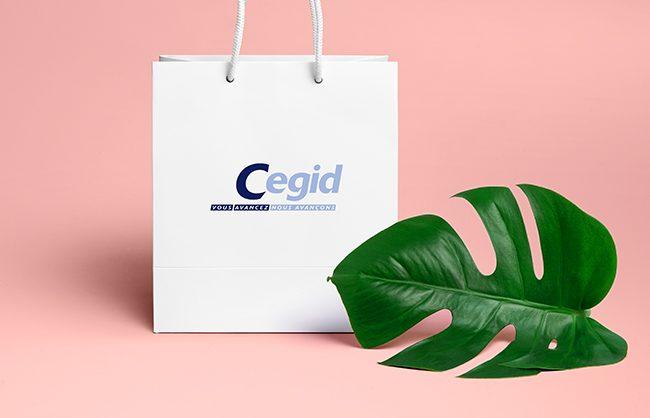 illustration réalisation CEGID-5